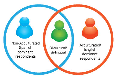 Hispanic Panel Acculturation